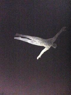 090203_2037~02_空を飛ぶ.JPG